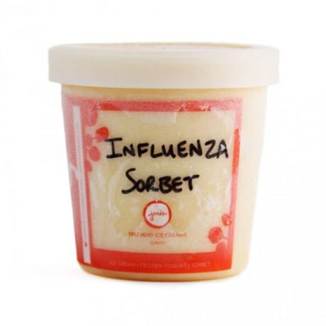 jeni's influenza sorbet