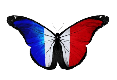 We Stand with France